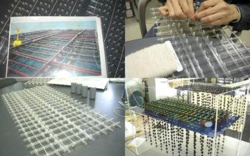 カキ養殖イカダ模型